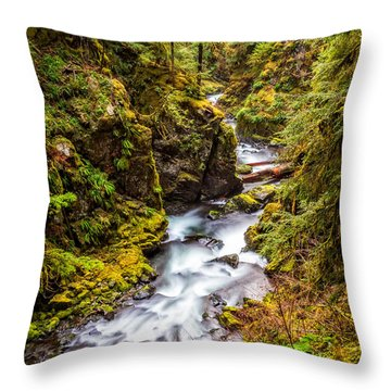 Throw Pillow featuring the photograph Deep In The Forest by Ken Stanback