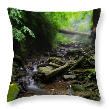 Deep In The Woods Throw Pillow by Bill Cannon