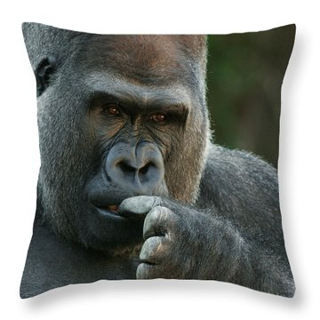 Deep In Thought Throw Pillow by Judy Whitton