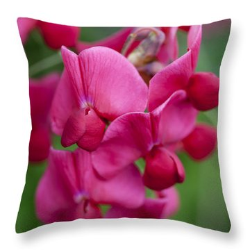 Deep Pink Sweet Pea Throw Pillow