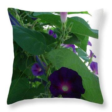 Deep Purple Morning Throw Pillow