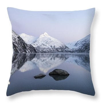 Deep Purple Throw Pillow by Ted Raynor