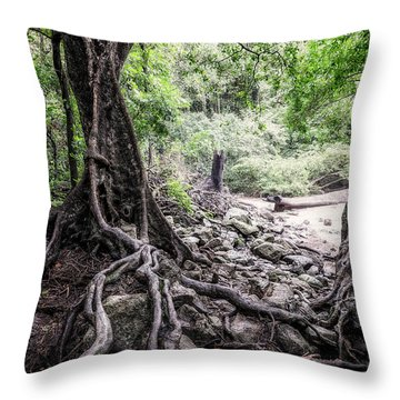 Deep Rooted Throw Pillow