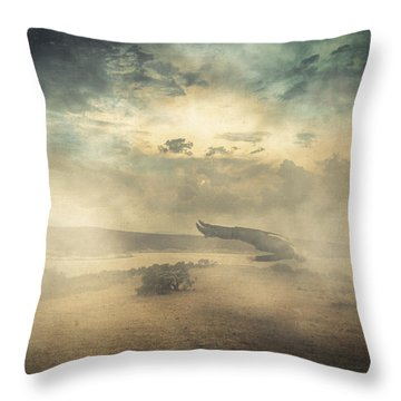 Deep Sleep Throw Pillow by Taylan Apukovska