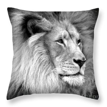 Deep Thought Throw Pillow