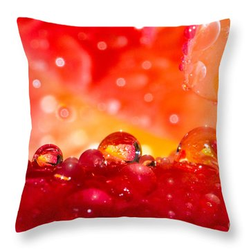 Deep Within A Rose Throw Pillow