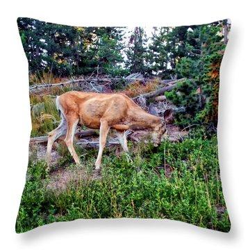 Throw Pillow featuring the photograph Deer 1 by Dawn Eshelman