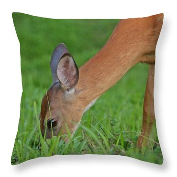 Deer 25 Throw Pillow