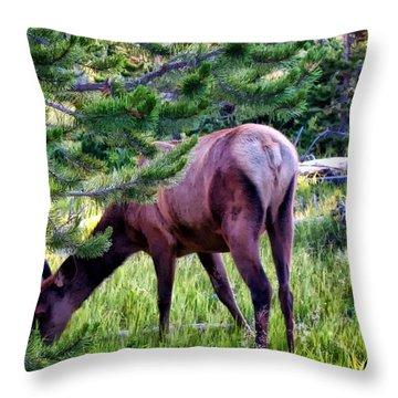 Throw Pillow featuring the photograph Deer 7 by Dawn Eshelman