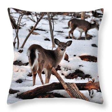 Deer And Snow Throw Pillow