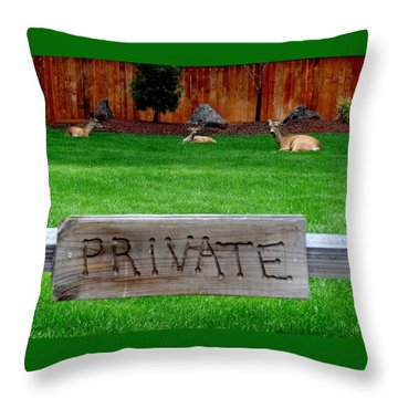 Deer At Rest Throw Pillow by Nick Kloepping