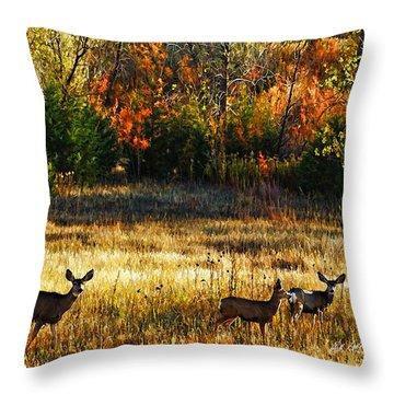 Deer Autumn Throw Pillow by Bill Kesler