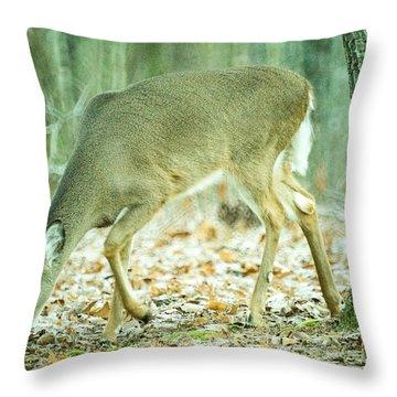 Deer Browsing Through Light Snow Throw Pillow
