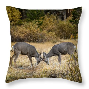 Deer Games Throw Pillow