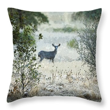 Deer In A Meadow Throw Pillow