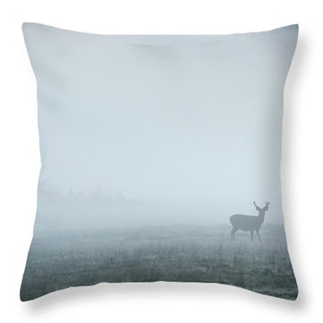 Deer In Fog At Dawn In Tuolumne Throw Pillow