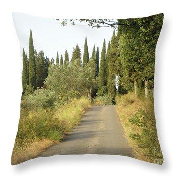 Deer In Loppiano Throw Pillow