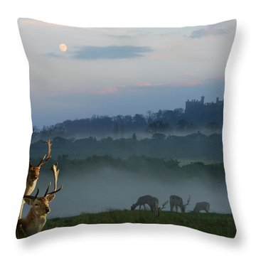 Deer In The Mist Throw Pillow
