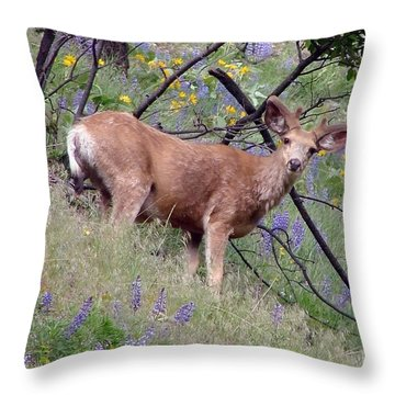 Throw Pillow featuring the photograph Deer In Wildflowers by Athena Mckinzie