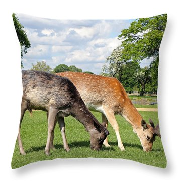 Two Deer Throw Pillow
