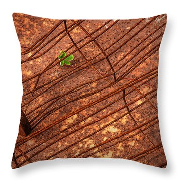 Persistence Throw Pillow