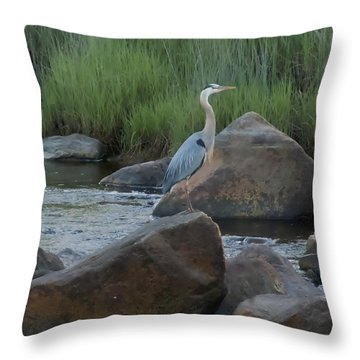 Definitely Blue Heron Throw Pillow by Francine Frank