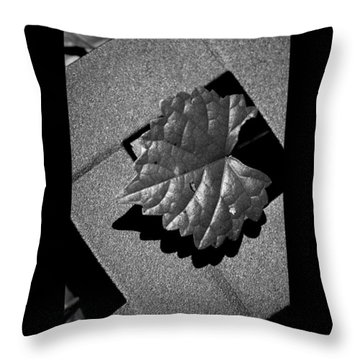 Definition Throw Pillow