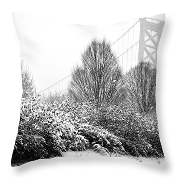 Delaware Avenue Throw Pillow