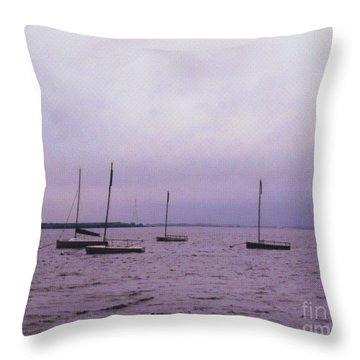 Delaware Harbor Throw Pillow