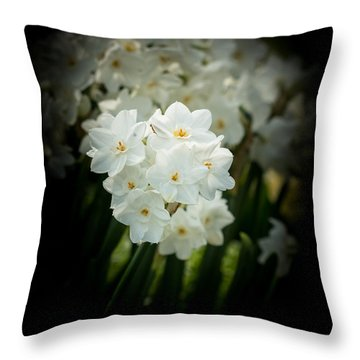 Delicate Daffodils Throw Pillow by Cathy Donohoue