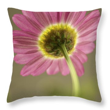 Delicate Daisy Throw Pillow