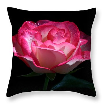 Throw Pillow featuring the photograph Delicate Fountain by Doug Norkum