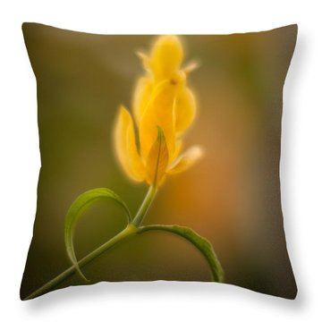 Delicate Fountain Of Gold Throw Pillow by Mike Reid