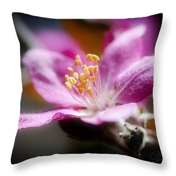 Delicate Glow Throw Pillow by Greg Collins