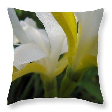 Delicate Iris Throw Pillow by Cheryl Hoyle
