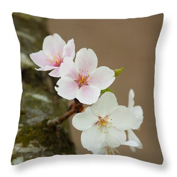 Delicate Isolation Throw Pillow