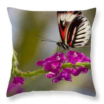 delicate Piano Key Butterfly Throw Pillow