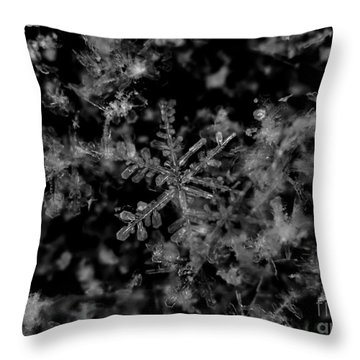 Delicate Snow Throw Pillow by Cheryl Baxter