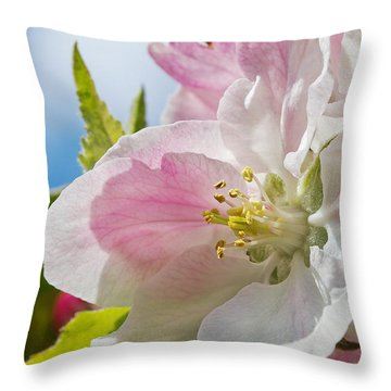 Delicate Spring Blossom Throw Pillow by Mr Bennett Kent