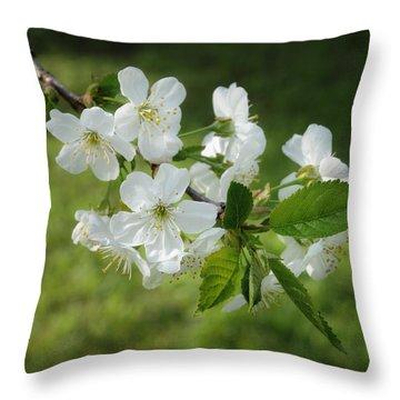 Delicate Springtime Throw Pillow by Ari Salmela