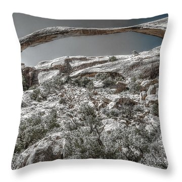 Delicate Stone Throw Pillow
