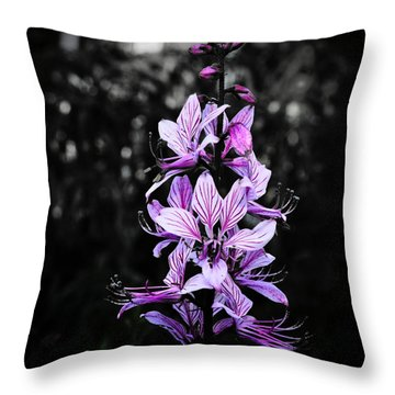 Delicate Violet Throw Pillow