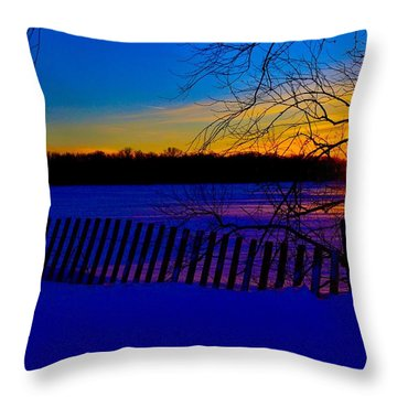 Delight Behind The Fence Throw Pillow by Zafer Gurel