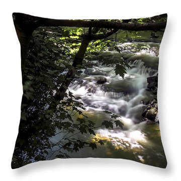 Dell Throw Pillow