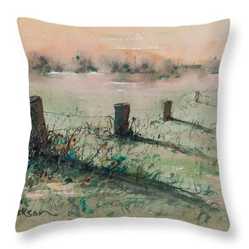 Delta 14 Throw Pillow