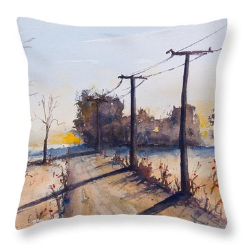 Delta 4 Throw Pillow
