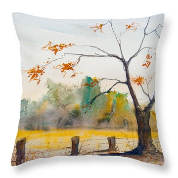 Delta 5 Throw Pillow