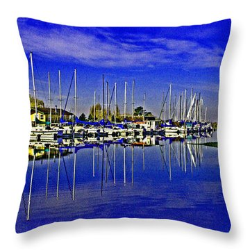Delta Loop Marina Throw Pillow