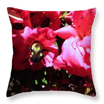 Throw Pillow featuring the photograph Delving Into Sweetness by Robyn King
