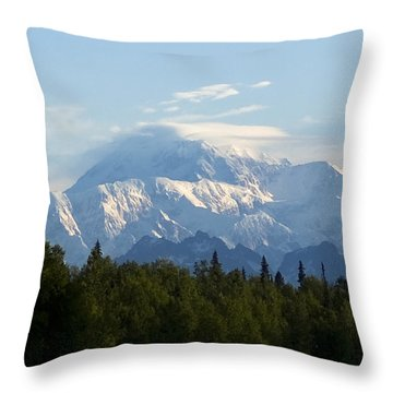 Denali A Closer Look Throw Pillow